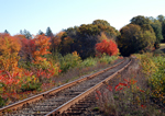Click here to view a larger image of Cape Cod Railroad Pass.